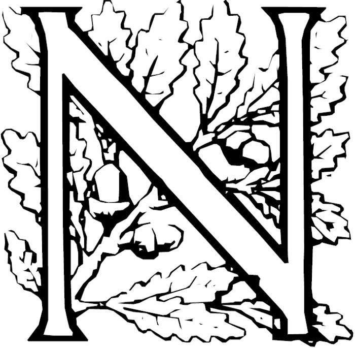 Free Coloring Pages Of The Letter N